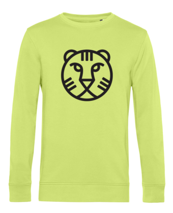 IFFR Sweater Lime